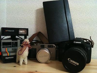 モレスキンが神奈川に到着しました。